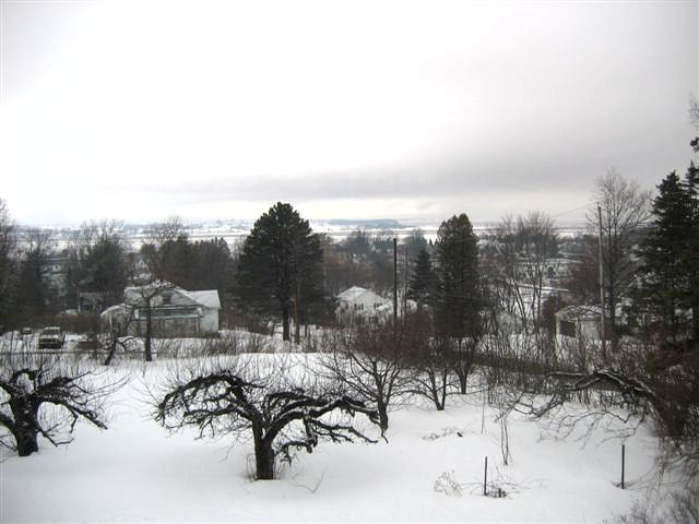 www.wolfvillehouse.com_images_may-winter-lg