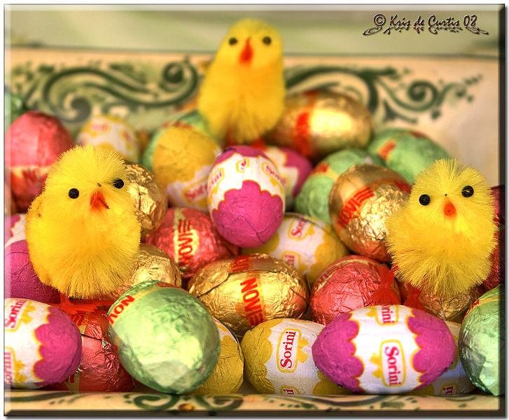 upload.wikimedia.org_wikipedia_commons_thumb_7_77_Chocolate_Eggs.jpg_727px-Chocolate_Eggs