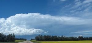 eastcoastbychoice.ca_wp-content_uploads_2010_04_Caneadea_Prairie-Sky-300x141