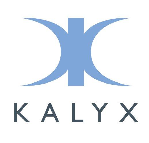 1.bp.blogspot.com__qqmaTTvV3UA_TA6Sgc-nHyI_AAAAAAAAGEQ_geca-hMykic_s1600_kalyx+logo