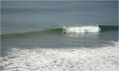 www.bedfordbeacon.com_wp-content_uploads_2010_08_surfers-lg