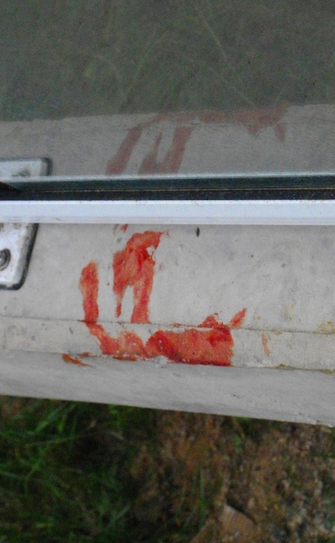 storyimg11_112710_murder