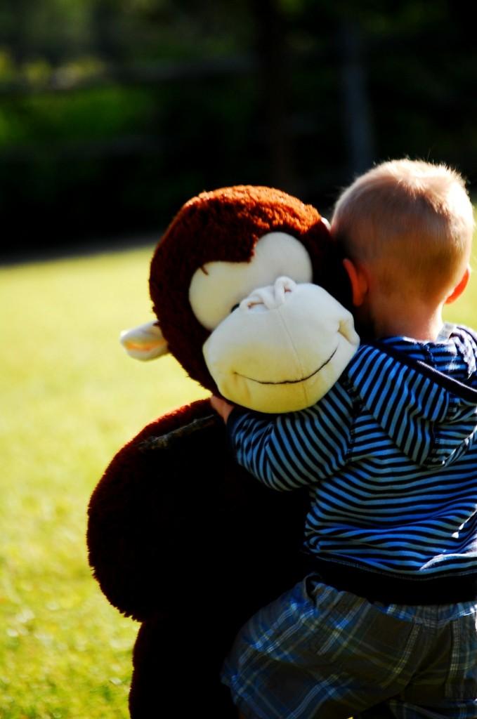 wordless wednesday: monkey
