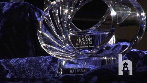 storyimg18_fusiongoawrds2011