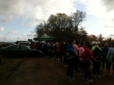 Muir Murray 10k Wine Run: Race Recap