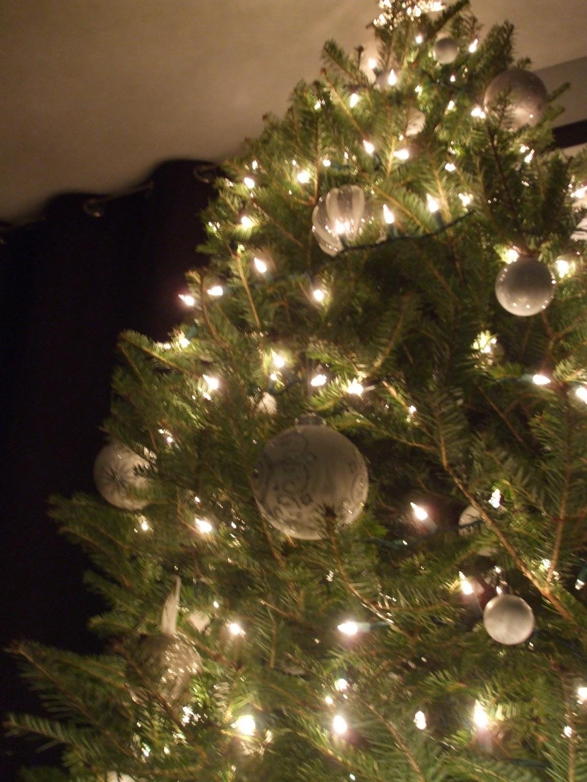 2.bp.blogspot.com_-bzZQagfBPP0_TuVAadA9WCI_AAAAAAAABPQ_LFnvyLRsSos_s1600_christmas+2011+007