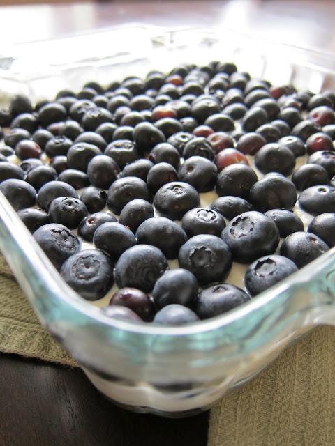 No-Bake Blueberry Cheesecake Squares