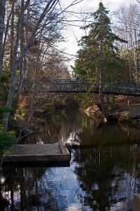 Best Camping Spots Near Halifax