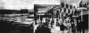 Half Century of Halifax Shopping Centre