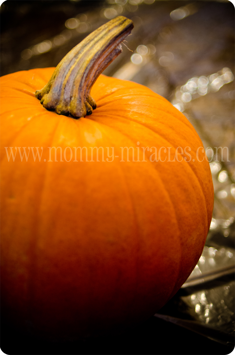 mommy-miracles.com_wp-content_uploads_2012_10_pumpkin