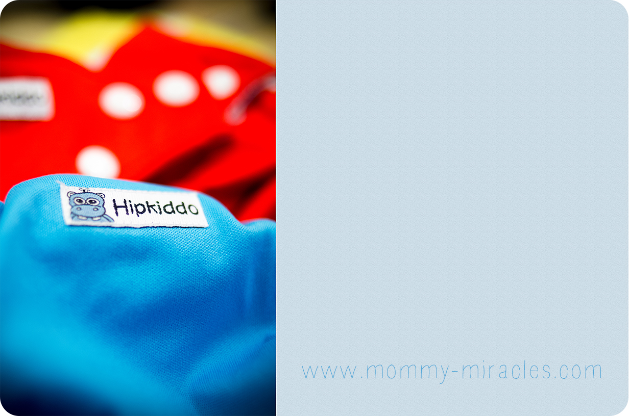 mommy-miracles.com_wp-content_uploads_2013_01_ClothDiapers