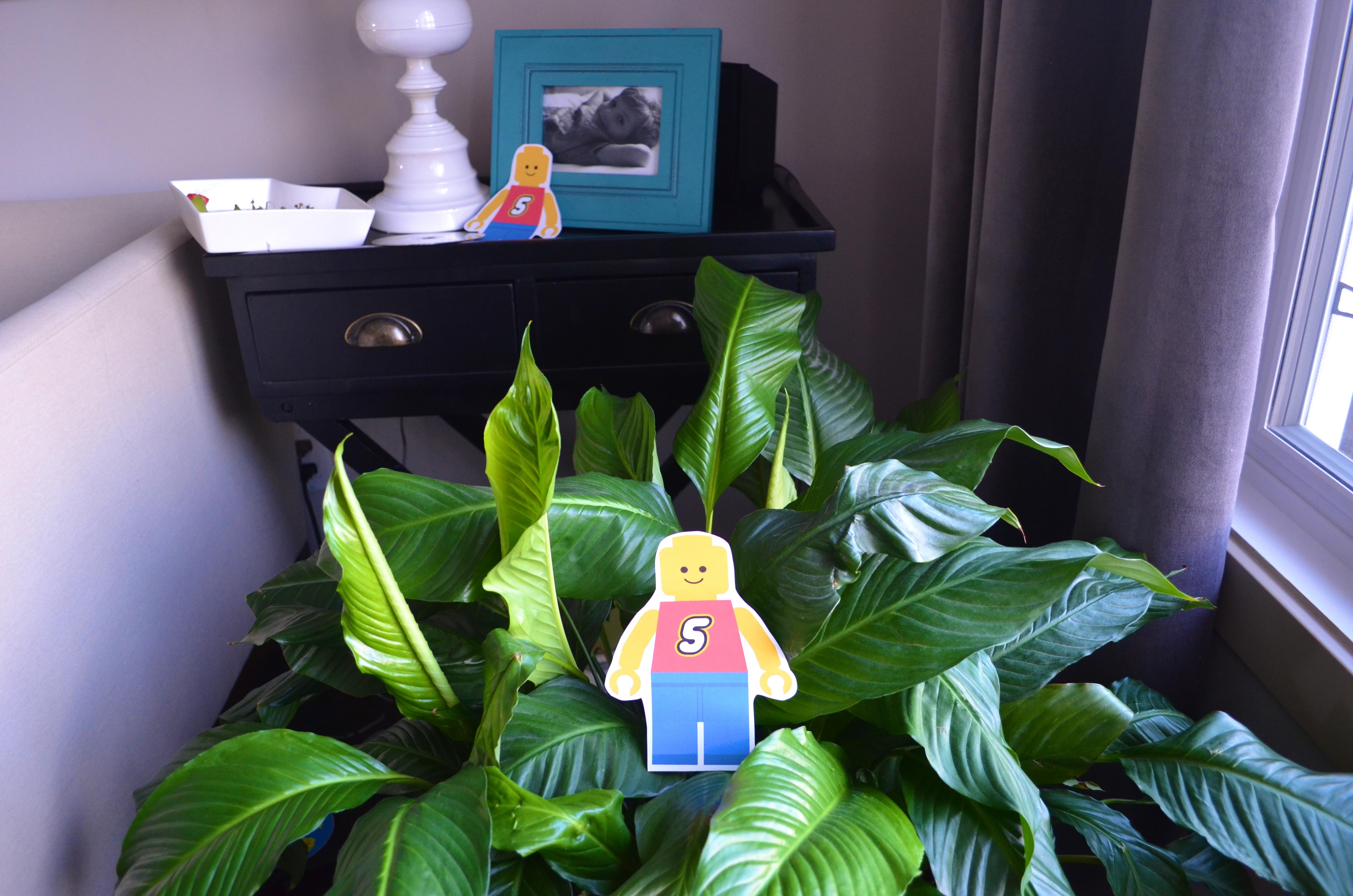 lego duplo playdate for 8 children? pass the chai tea please! #legoduploplay #safetoys #nontoxic