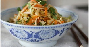 theculinarychase.com_wp-content_uploads_2014_02_coleslaw-with-Asian-dressing-by-The-Culinary-Chase
