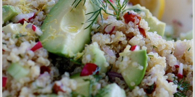 theculinarychase.com_wp-content_uploads_2014_03_quinoa-salad-with-radish-dill-avocado-by-The-Culinary-Chase