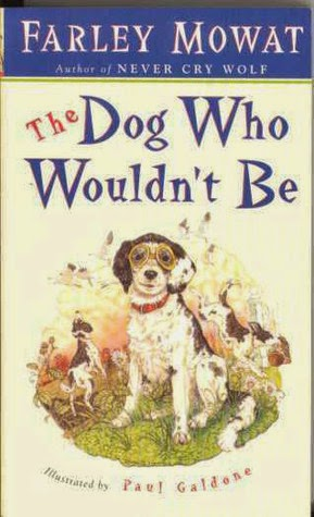 http://discover.halifaxpubliclibraries.ca/?q=title:dog%20who%20wouldn%27t%20be