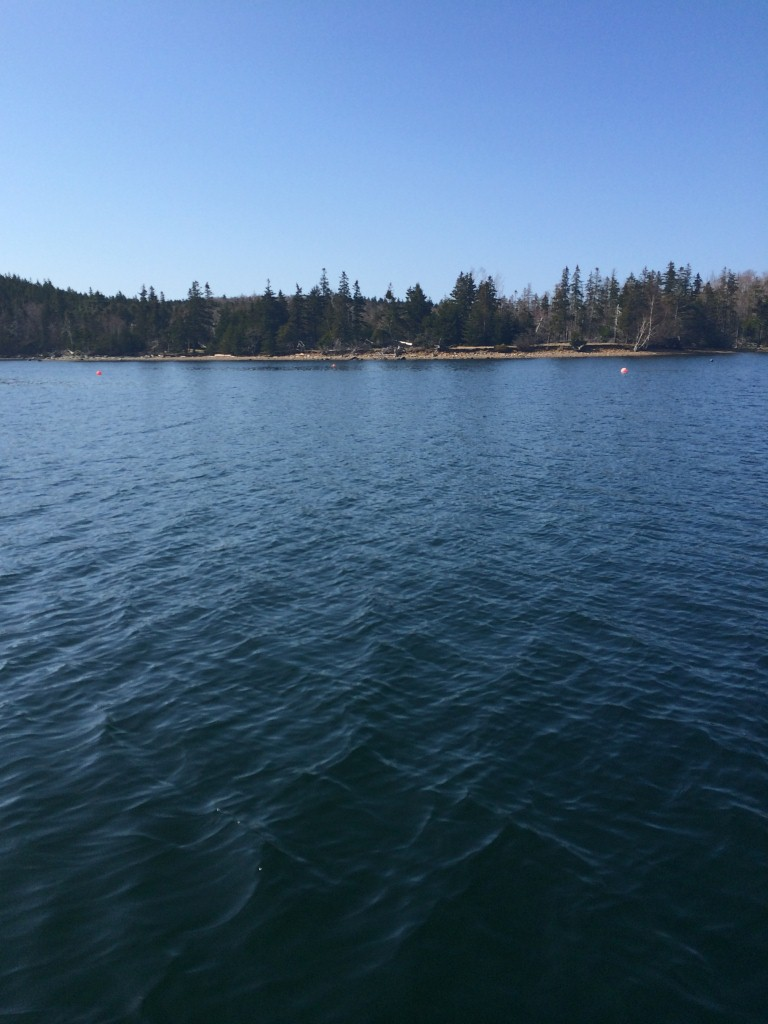 Approaching Timmins Cove Where we landed