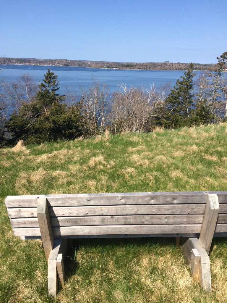 Quite possibly the best bench in HRM