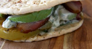 theculinarychase.com_wp-content_uploads_2014_09_fried-green-tomato-sandwich