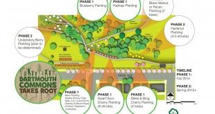 www.hellodartmouth.ca_wp-content_uploads_2014_09_Orchard-Plans-PNG