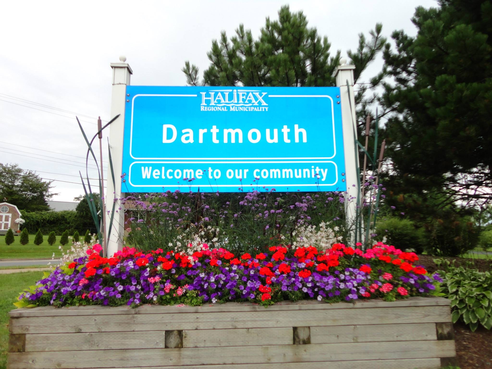 dartsign5