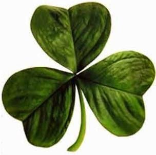 3.bp.blogspot.com_-bJ2nFzYd7po_VNtvDEiAKwI_AAAAAAAAFRs_HHVLTfy0WmQ_s1600_Irish_clover