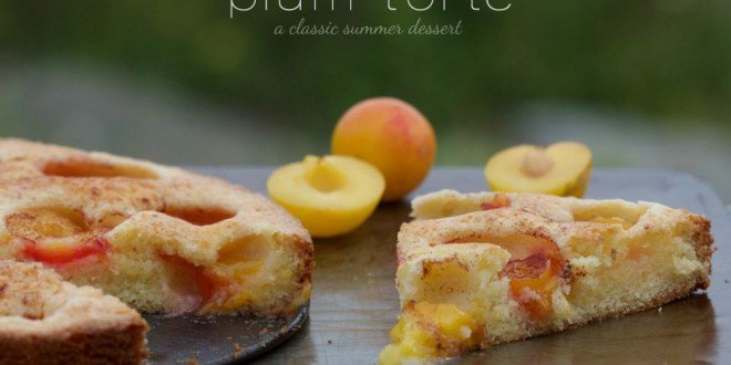 theculinarychase.com_wp-content_uploads_2015_08_plum-torte