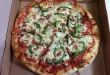Pizzadelic-1
