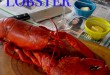 how-to-cook-a-lobster