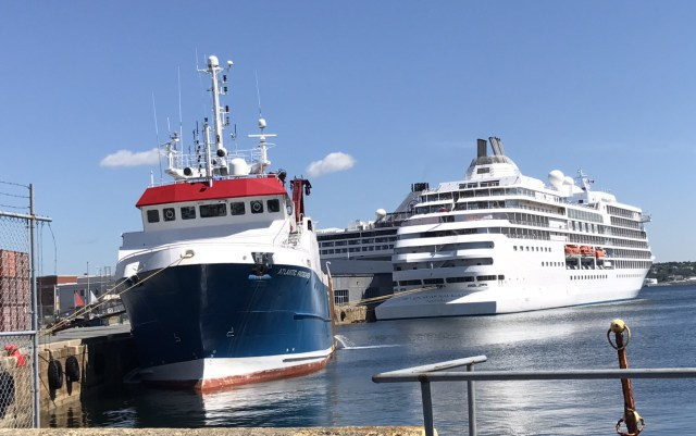 Busy Day at the Cruise Terminal