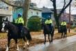 Mounted_Unit_3_Horses_2_resized