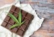 Marijuana leaves on top of dark chocolate
